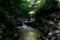 Doğa Severlerin Yeni Rotası, Nüzhetiye Şelalesi