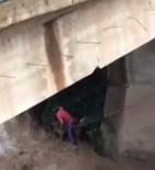 Irmakta Mahsur Kalan Köpeği Böyle Kurtardı
