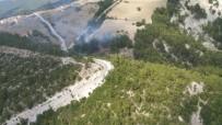 Sarayköy'de Ormanlık Alanda Yangın Çıktı