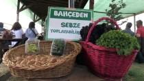 Çocukları İçin Organik Çilek Ürettikleri Bahçe Geçim Kaynakları Oldu
