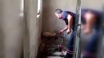 Konya'da Eve Giren Yılanı İtfaiye Ekipleri Çıkardı