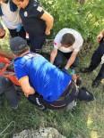 Kurtarma Ekipleri Dağda Kekik Toplarken Kayalıklardan Düşüp Yaralanan Vatandaş İçin Seferber Oldu