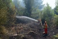 Antalya'da Orman Yangını, 1 Hektar Orman Zarar Gördü