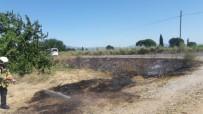 Burhaniye'de İki Ot Yangını Birden Çıktı