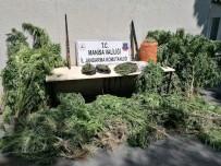 Manisa'da Uyuşturucu Operasyonu Açıklaması 1 Gözaltı