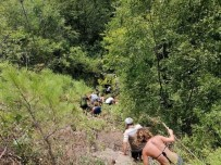 ALAADDIN KEYKUBAT - 1 Turistin Öldüğü, 10 Turistin Yaralandığı Kazanın Sürücüsü Tutuklandı