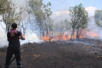 ANIZ YANGINI - Anız Yangınında 40 Dönüm Arazi Yandı