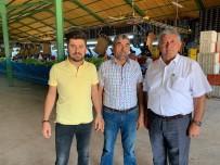 Yenişehir'den Avrupa'ya Yılda 800 TIR Biber İhraç Ediliyor