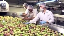 Afyonkarahisar'da Üretilen Meyve Konsantreleri ABD Sofralarında