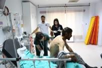 Ayı Saldırısında Yaralandı, Helikopterle Hastaneye Kaldırıldı