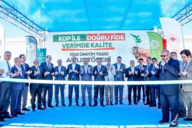 Konya'nın İlk 'Fide Üretim Tesisi' Meram'da Açıldı