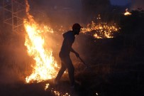 ANIZ YANGINI - Anız Yangınına Kova Ve Hortumla Müdahale Ettiler