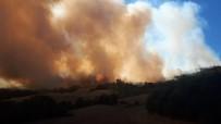Orman Yangını Kısmen Kontrol Altına Alındı