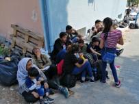 Çanakkale'de 213 Mülteci Yakalandı