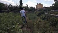 Ankara'dan Hatay'a Götürülen Yabancı Uyruklu Şahıs Aksaray'da Firar Etti