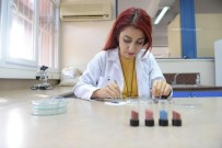 ONKOLOJİ HASTANESİ - Kansere karşı 'Milli ve yerli ilaç'