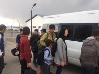 NENE HATUN - Otobüs Bileti Alarak İstanbul'a Gitmek İsteyen 15 Afgan Göçmen Yakalandı