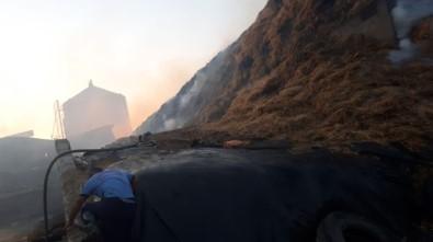 100 Bin Büyükbaş Hayvanın Bulunduğu Besi Çiftliğinde Korkutan Yangın