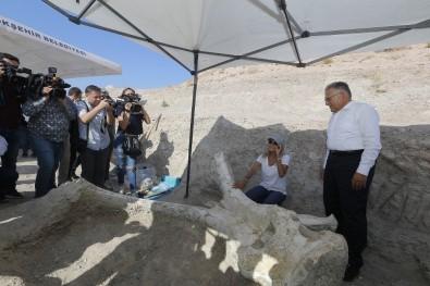 7,5 Milyon Yıl Önce Filler Ve Zürafaların Olduğu Kayseri'nin Tarihi Yeniden Yazılacak