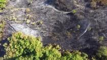 Bahçe Temizliği Anız Yangınına Yol Açtı