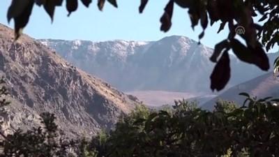 Erzincan'ın Zirvesine Kar Yağdı