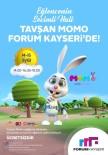 Akıllı Tavşan Momo Forum Kayseri'de