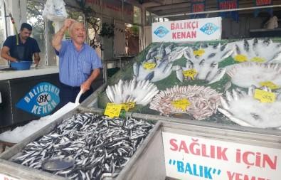 Balıkçı Kenan Balcı Açıklaması 'Palamutun Az Olmasının Nedeni, Havaların Sıcak Olması'