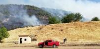 Bingöl'de Orman  Yangını Söndürüldü