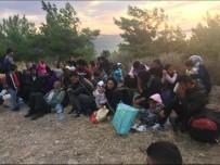 TEKEV - Ayvalık'ta 48 Göçmen 3 Organizatör Yakalandı