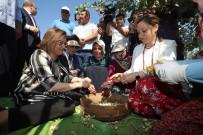 Başkan Fatma Şahin, Gurme Ve Gastronomi Yazarları İle Birlikte Fıstık Topladı