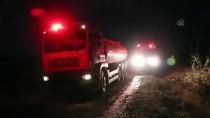 ANIZ YANGINI - Bolu'da Orman Yangını