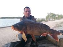 PELITÖZÜ - Gölpark'taki Balık Popülasyonu Artıyor