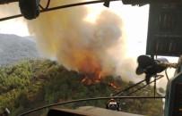 Marmaris'te Bu Yıl 35 Hektar Ormanlık Alan Yandı