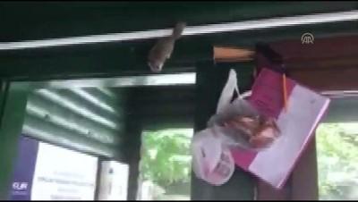 Yedigöller'de İlk Kez 'Yediuyur' Görüntülendi