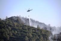 Bodrum'daki Orman Yangını Güçlükle Kontrol Altına Aldı