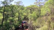 GÜNCELLEME 3 - Muğla'da Orman Yangını
