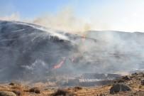 İzmir'de 2 İlçede Orman Yangını