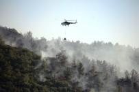 Tarım Ve Orman Bakanlığı Bugün Çıkan Yangınlarla İlgili Açıklama Yaptı