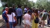 Yabancı Öğrenciler, Antandros Antik Kenti'ni Gezdi
