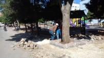 Yeni Belediye Hizmet Binasının Peyzajı Yapılıyor