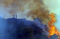 Antalya'da Mahalleliyi Sokağa Döken Yangın