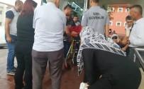 NECATI ÇELIK - Ceviz Toplarken Ağaçtan Düşen Yaşlı Adam Ağır Yaralandı
