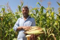 Cumhurbaşkanı Erdoğan Startını Vermişti Açıklaması Çiftçinin Yüzü Gülüyor