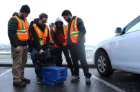 OTURMA İZNİ - İzmir'den Kanada'ya Uzanan Başarı