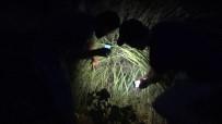 Kayalıklarda Mahsur Kalan Yavru Kedi İçin Seferber Oldular