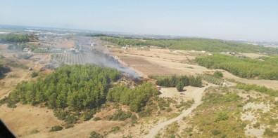 Arap Beleni'nde Çıkan Yangın, Ormana Ulaşmadan Söndürüldü
