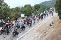 YEŞILDAĞ - Beyşehir'de Bisiklet Festivali Sona Erdi