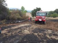 ANIZ YANGINI - Bilecik'te Anız Yangını