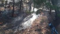 Buldan'da 2,5 Hektarlık Ormanlık Alan Yandı