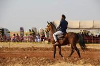 AT YARIŞI - El Bab'da At Yarışı Coşkuyla İzlendi